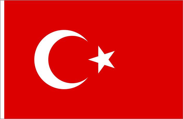 Türk Bayrağı Tam Standart - Orjinal